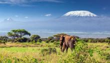 kilimandjaro tanzania