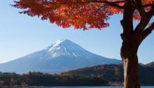 parcs nationaux japonais
